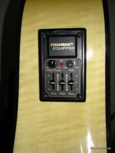 Fender DG22CE NAT